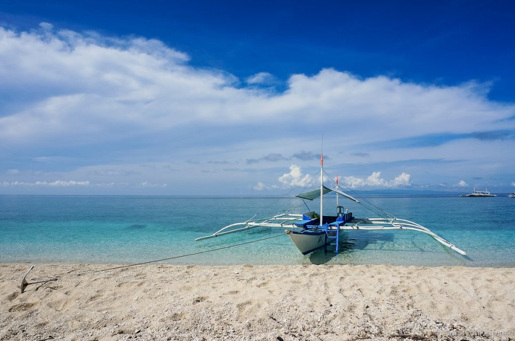 best bohol tours