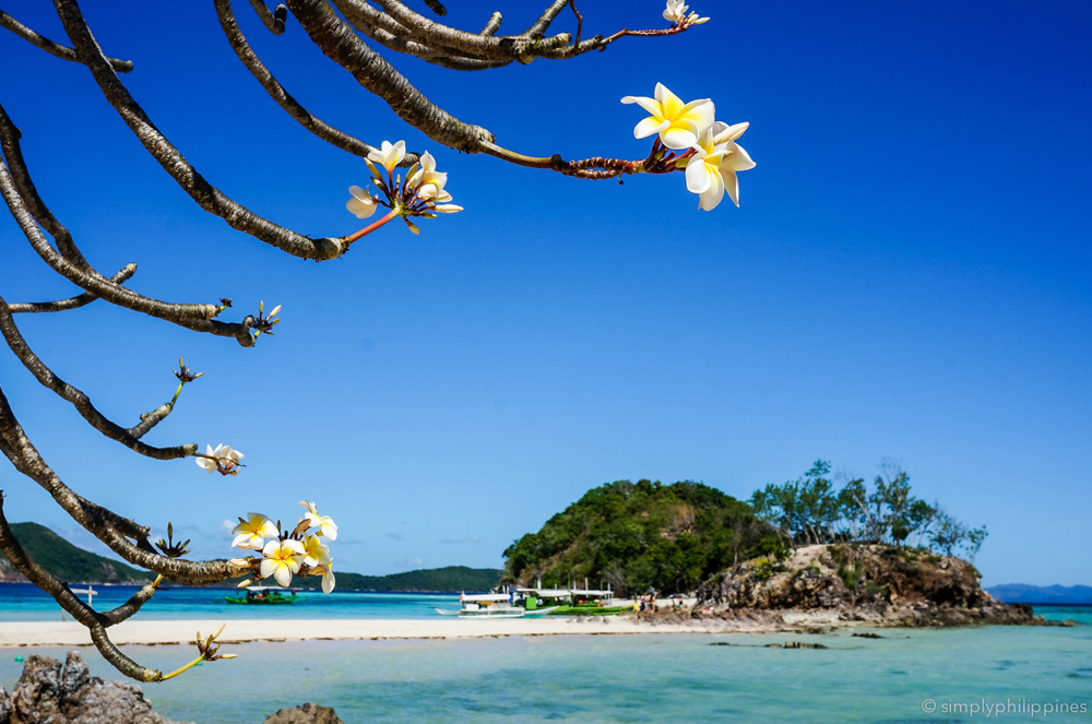 best destination in palawan